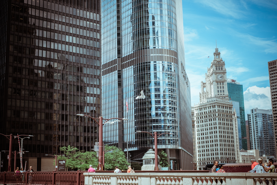 ateljelena-fotograf-chicago-webb-159